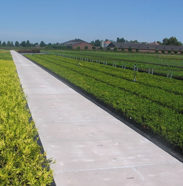 stelcon ground agricon großflächenplatte